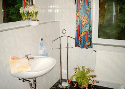 Bad mit Dusche, WC und Haartrockner